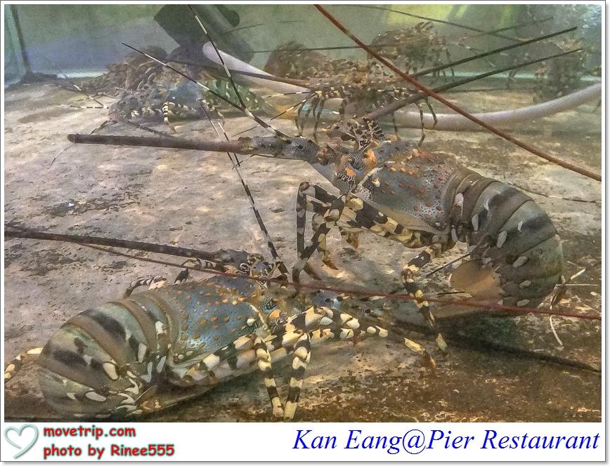 kaneang9