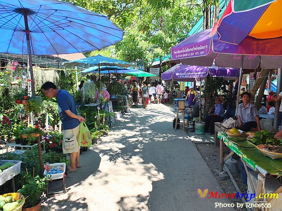 bangnampeung1