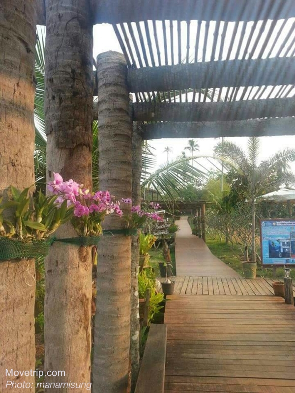 The-Cinnamon-Resort-and-Spa-Koh-Mak-3