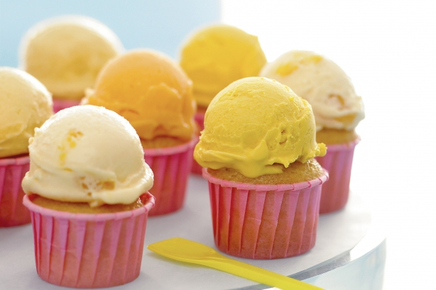 Martha-Stewart's-ice-cream-cupcakes