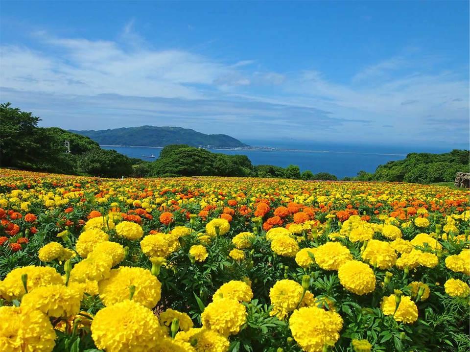 Nakonoshima-Island-Park-2