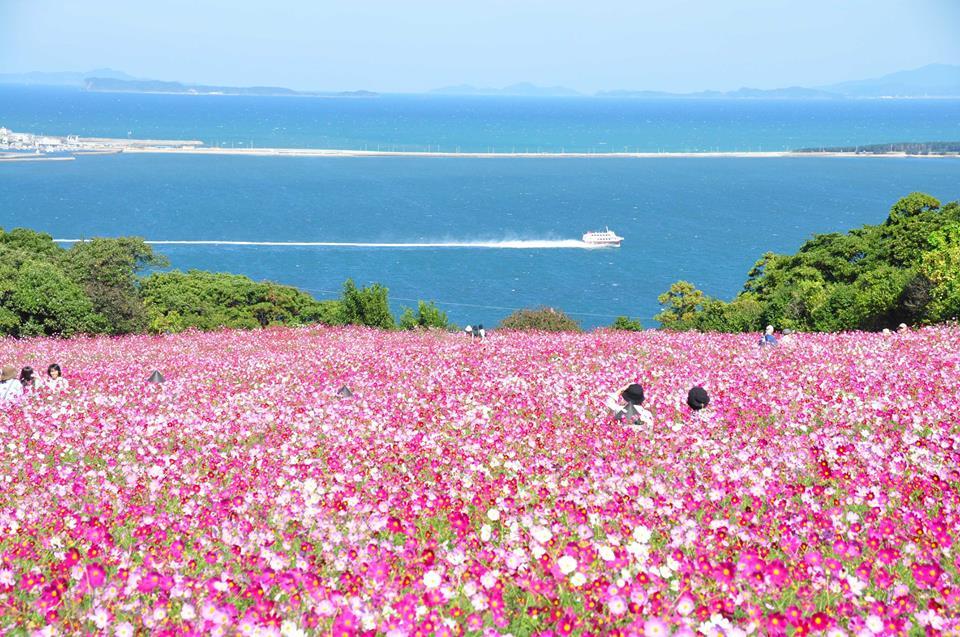 Nakonoshima-Island-Park-4